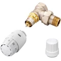 Set termostatic RAS-C2 RA-IN